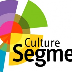 Image for Culture Segments